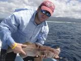Grouper tagging at Kehpara Marine Santuary